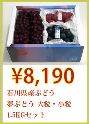 石川県産ぶどう 夢ぶどう 大粒・小粒 1.5kgセット