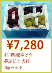 石川県産ぶどう 夢ぶどう 大粒 1kgセット