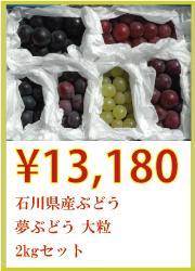 石川県産ぶどう 夢ぶどう 大粒 2kgセット