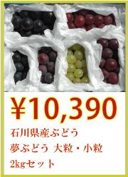 石川県産ぶどう 夢ぶどう 大粒・小粒 2kgセット