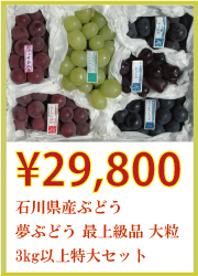 石川県産ぶどう 夢ぶどう 大粒 最上級品 3kg以上 特大セット