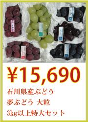 石川県産ぶどう 夢ぶどう 大粒 3kg以上 特大セット
