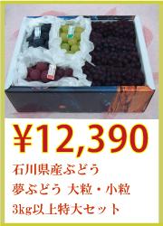 石川県産 夢ぶどう 大粒・小粒 3kg以上 特大セット