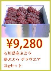 石川県産ぶどう 夢ぶどう デラウエア 2kgセット